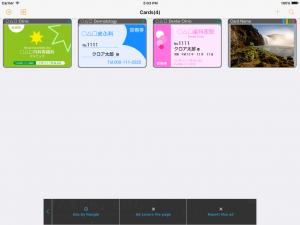 CardSleeve for iPad (4 columns list)